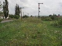 Signal Near Barghis