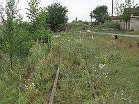 Selimbar Station